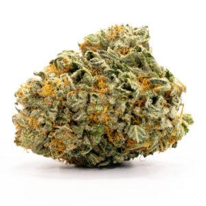 buy candyland weed strain online