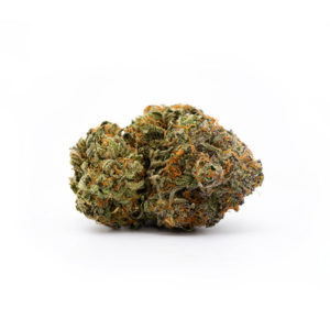 Buy Gushers Cannabis Online