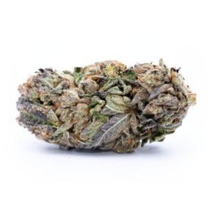 buy purple diesel weed strain online