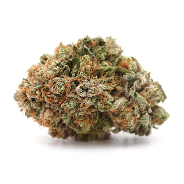 Buy Sunset Sherbert Weed Strain