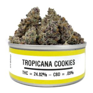 Buy Tropicana Cookies Weed Cans