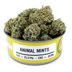 Buy Animal mint weed cans